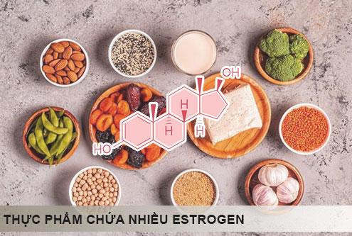 thực phẩm giàu estrogen
